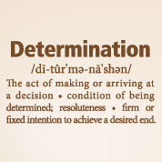 Determination Definition Wall Decal, Vinyl Wall Art
