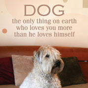 Dog Loves You More Wall Decal, Animal Vinyl Wall Art, Pet Wall Decor