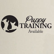 Puppy Training Wall Advertisement