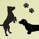 Begging Dog Animal Wall Decal