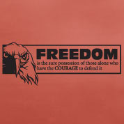 Freedom Wall Decal, Military Vinyl Wall Art, Americana