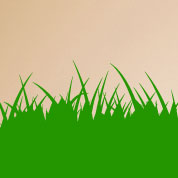 Grass Border Wall Decals