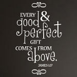Perfect Gift Baby Wall Decal Nursery Vinyl Wall Art
