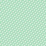 Mint Polka Dots, Craft Vinyl 12
