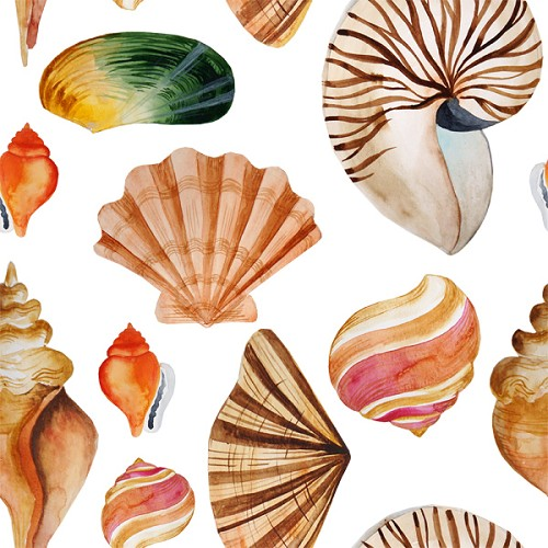 "Seashell Craft Vinyl Sheet 12"" x 12"""
