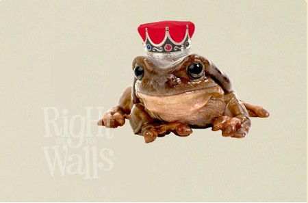Frog Prince Fantasy Kids Vinyl Wall Art
